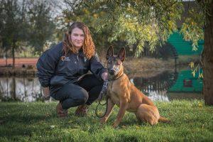 hondenbeveiliging