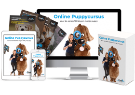 Snel en effectief een puppycursus